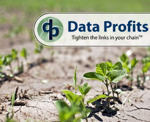 drought-strategies-to-success